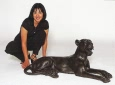 Lay Down Panther bronze reproduction