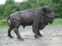 American Bison bronze sculpture