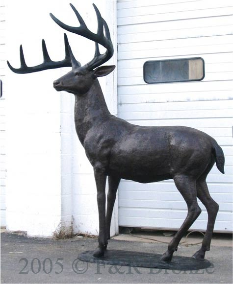 White Tailed Deer Bronze Sculpture .