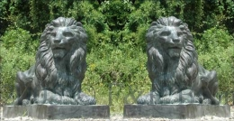 Pair of Guard Lions bronze statue